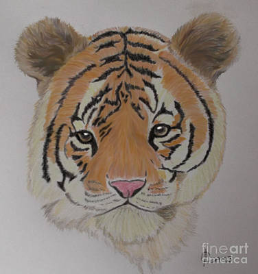 Mixed Media - Tiger Tiger by Cynthia Adams