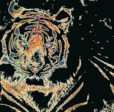 Animals Digital Art - Tiger Tiger by Stephanie Grant