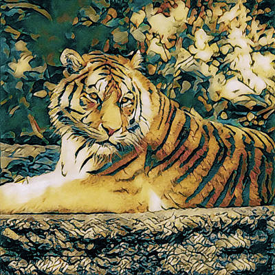 Photograph - Tiger, Tiger by Susan Maxwell Schmidt