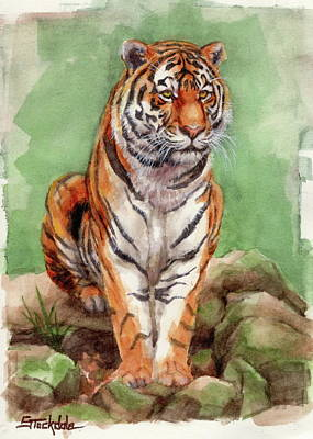 Painting - Tiger Watercolor Sketch by Margaret Stockdale