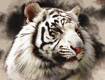 Tiger White Original
