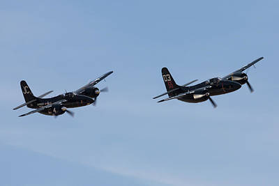 Photograph - Tigercats In Formation II by John Daly
