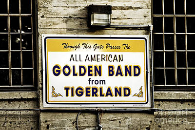 Tigerland Band Art Print by Scott Pellegrin