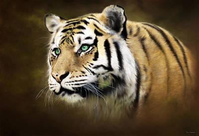 Tiger's Gaze Original