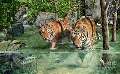 Digital Art - Tiger's Water Park by Don Olea