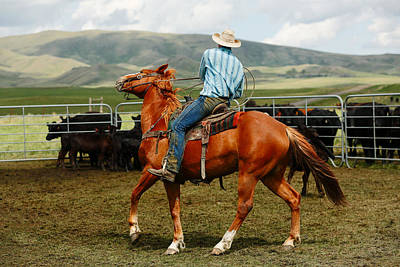 Working Cowboy Photograph - Tight Turn by Todd Klassy