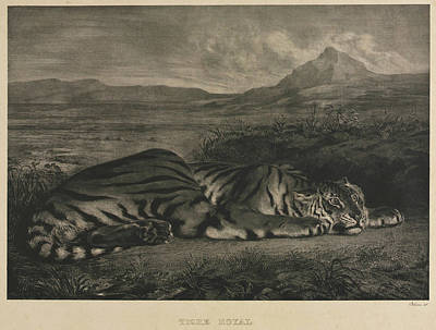 Glen Painting - Tigre Royal by Eugene Delacroix
