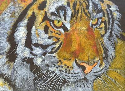 Tigress Art Print by Angela   Cater