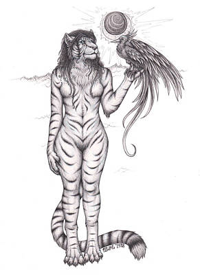 Pheonix Drawing - Tigress by Franki Zinke