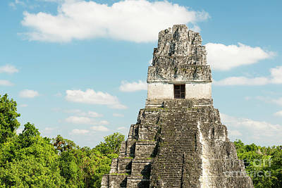 Photograph - Tikal Guatemala Ruins by Tim Hester