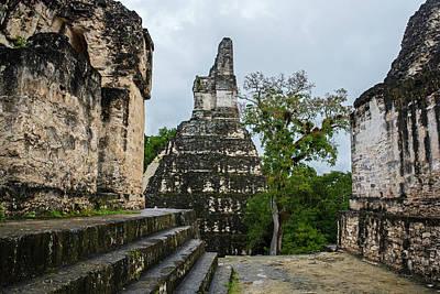 Photograph - Tikal Mayan Ruins Mayan Temple by Toby McGuire
