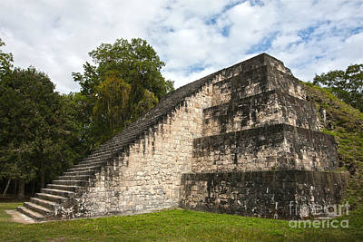Photograph - Tikal Mayan Site Guatemala by Tatiana Travelways