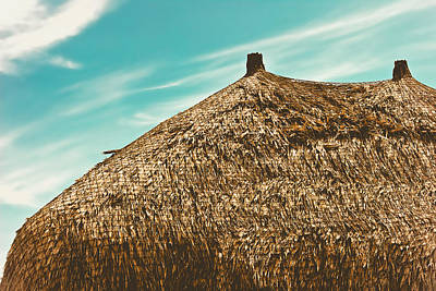 Photograph - Tiki Hut by Colleen Kammerer