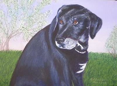 Painting - Tiko, Lovable Family Pet. by Lorraine Bradford