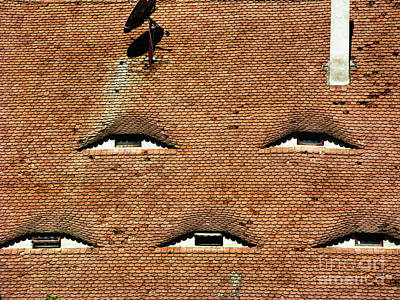 Photograph - Tile Roof In Medieval Sibiu  Eye-shaped Windows by Daliana Pacuraru