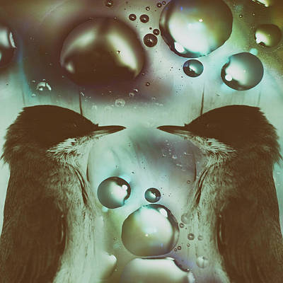Lovebird Wall Art - Photograph - Till I No Longer Breathe by Stelios Kleanthous
