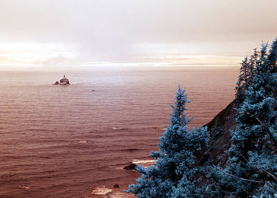 Photograph - Tillamook Lighthouse by Rebecca Parker