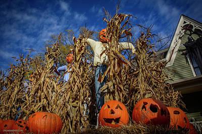 Photograph - Tillson Street Scarecrows by LeeAnn McLaneGoetz McLaneGoetzStudioLLCcom