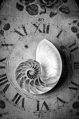 Photograph - Time And The Nautilus Shell by Garry Gay