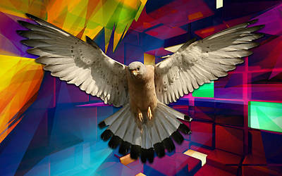 Time For Me To Fly Art Print