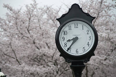 Photograph - Time For Spring by Dan Friend