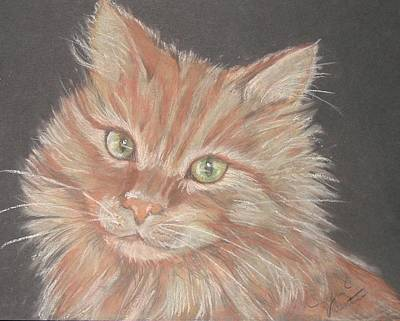 Time For Your Closeup Miss Tia Art Print by Sandra Valentini