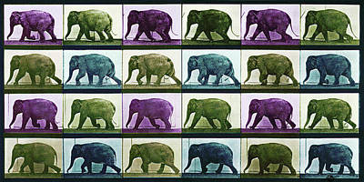 Mixed Media - Time Lapse Motion Study Elephant Color by Tony Rubino