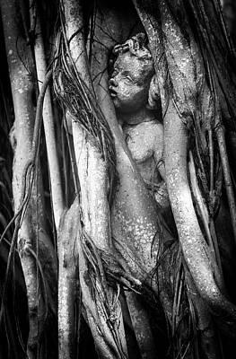 Photograph - Time Nurtures Love by Karen Wiles