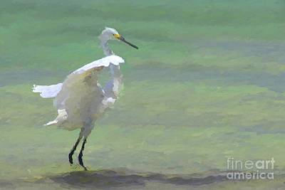 Plumage Wall Art - Digital Art - Time To Dance by John Edwards