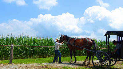 Amish Community Photograph - Time To Go Home by Tina M Wenger
