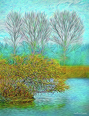 Digital Art - Timeless Flow by Joel Bruce Wallach
