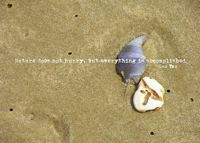Photograph - Timeless Nature Quote by JAMART Photography