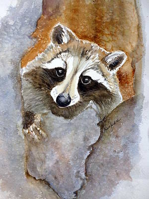Painting - Timid Racoon by Anna Jacke