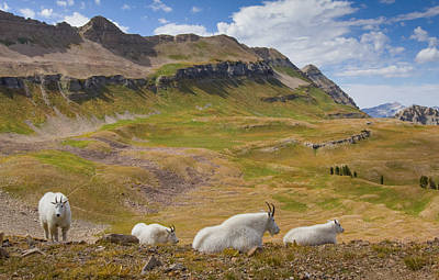 Photograph - Timp Basin Overlook by Kent Keller