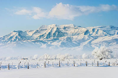 Photograph - Timp In Winter by TL Mair