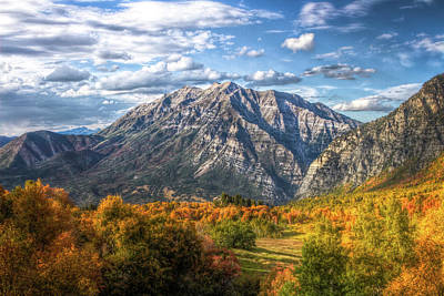 Timpanogos From Cascade Meadows Art Print
