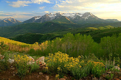Timpanogos From Mill Canyon Peak. Art Print by Johnny Adolphson
