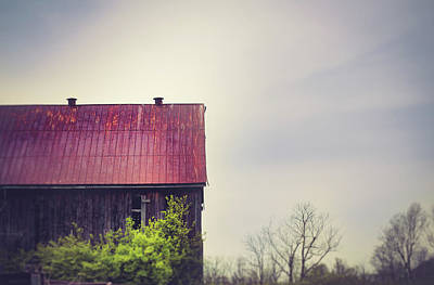 Photograph - Tin Roof Rusted by Shane Holsclaw