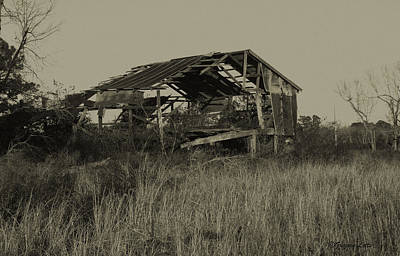Tin Shack Art Print by Gregory Letts