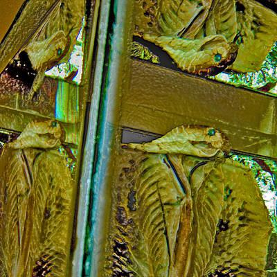 Tincture Of Snake. Thaisq. Siam Texture. Original