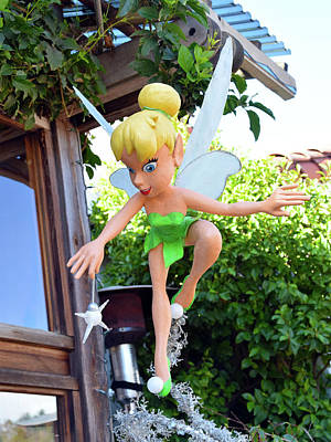 Photograph - Tinker Bell At Robins In Cambria California Detail by Barbara Snyder