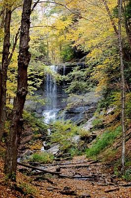 Photograph - Tinker Falls by David Lane