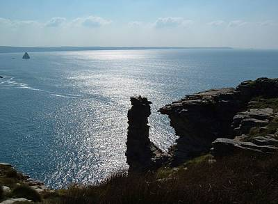 Photograph - Tintagel Stack Cornwall by Richard Brookes