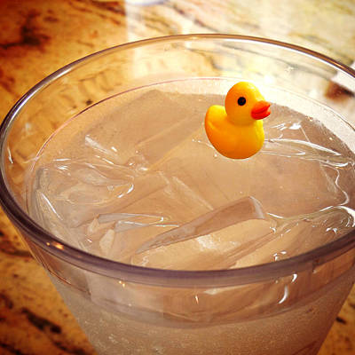 Photograph - Tiny Duck by Valerie Reeves