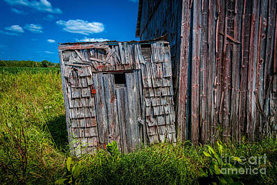 Photograph - Tiny Privy by Roger Monahan