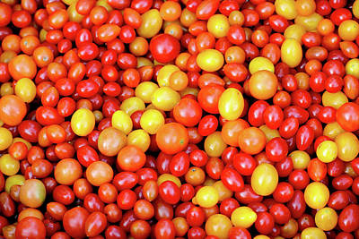 Photograph - Tiny Tomatoes by Todd Klassy