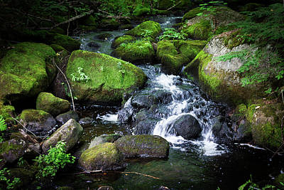 Photograph - Tiny Waterfall - Ellsworth Maine by Kirkodd Photography Of New England