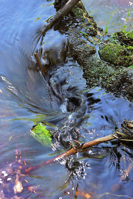 Photograph - Tiny Whirlpool by Ron Cline