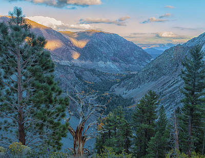Photograph - Tioga Pass by Jonathan Nguyen