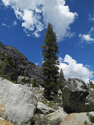 Photograph - Tioga Pass Sentinel by Jacqueline  DiAnne Wasson